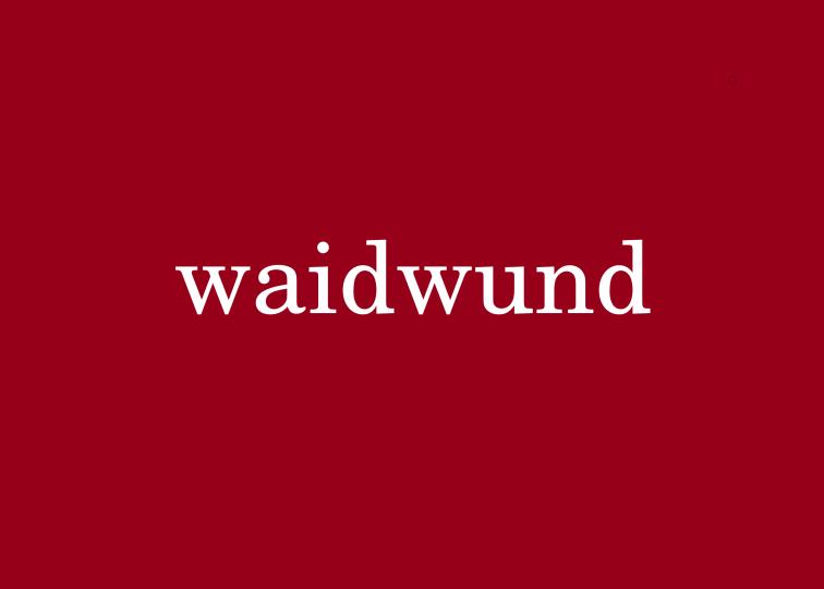 33 waidwund