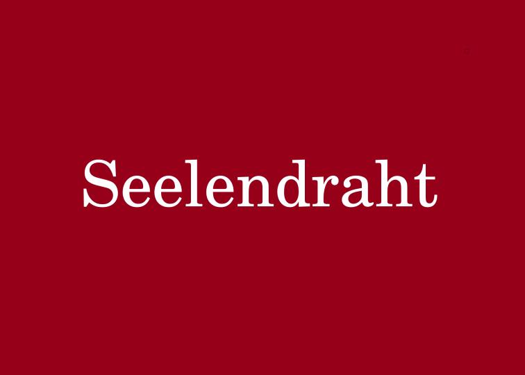 Seelendraht